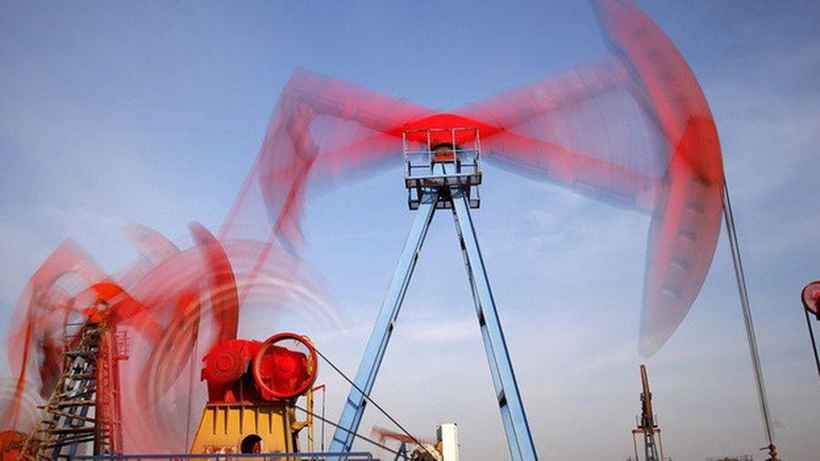 Mỹ xuất khẩu ròng năng lượng, giá dầu giảm thê thảm