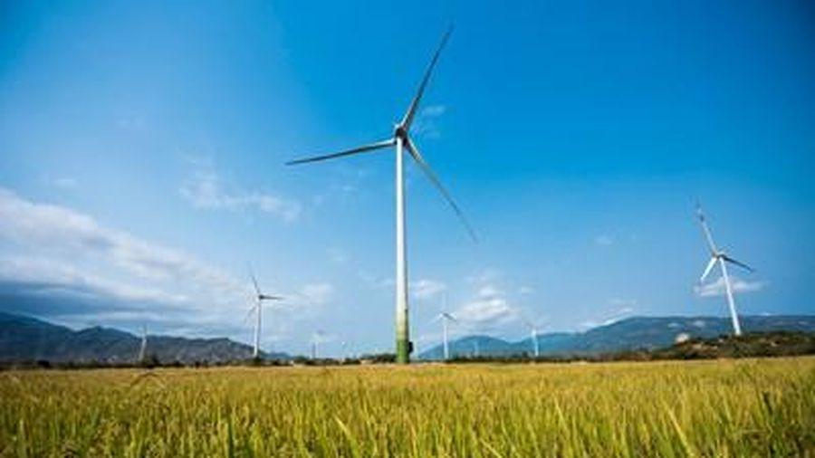 Phát điện dự án điện gió 'khủng' nhất Việt Nam