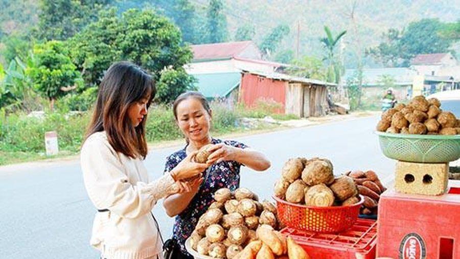 Độc đáo các mặt hàng nông sản sạch Thuận Châu, Sơn La