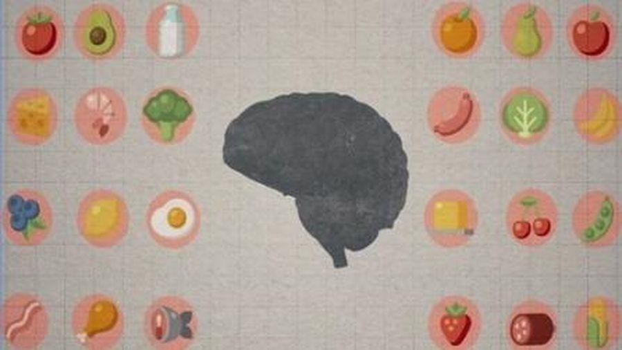 Tác động của thức ăn tới bộ não như thế nào?