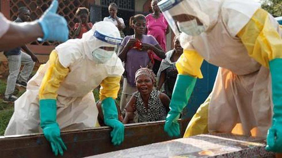 Nhật Bản lần đầu thử nghiệm lâm sàng vaccine Ebola