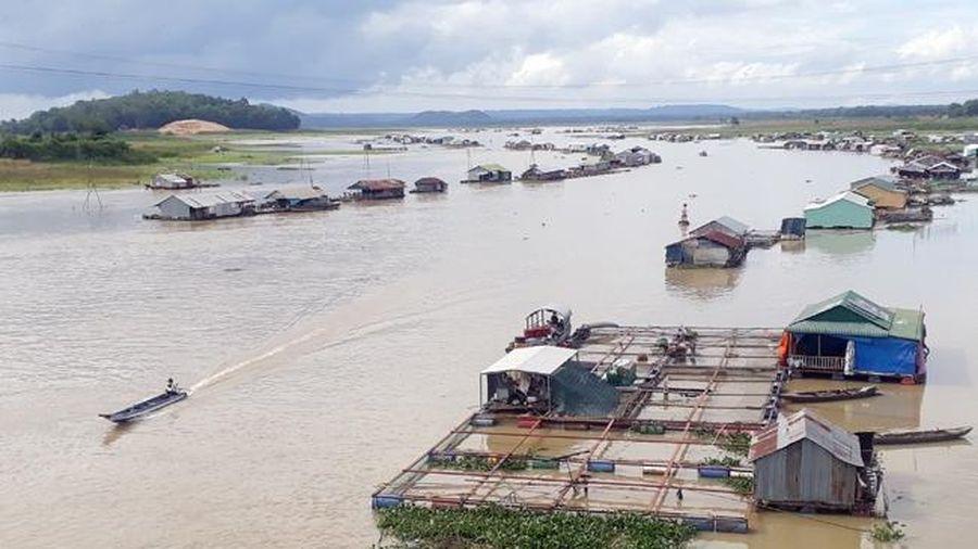 Nguy cơ ô nhiễm nước hệ thống sông Đồng Nai