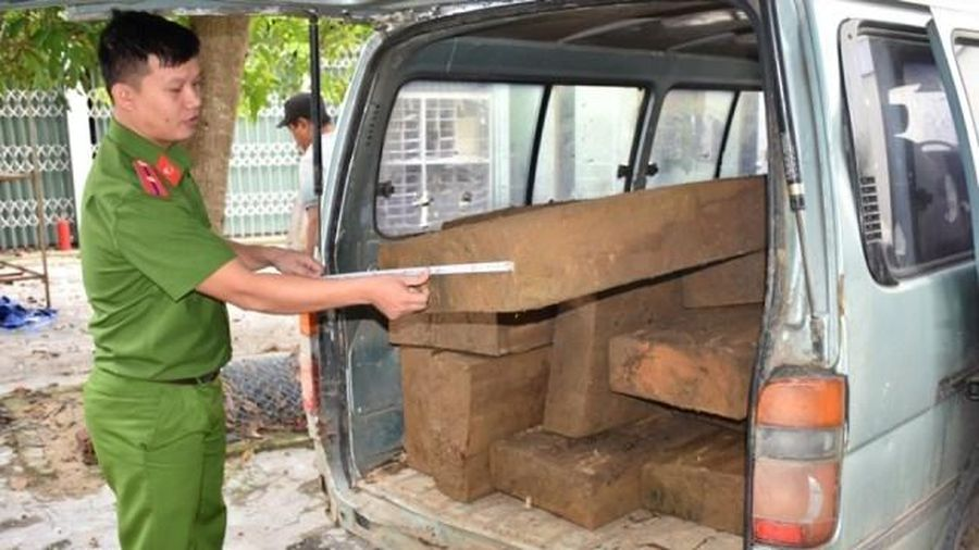 Tạm giữ hai xe ô-tô chở 46 phách gỗ lậu