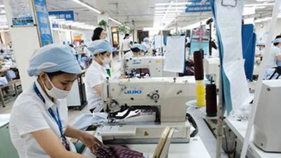 Thị trường lao động TPHCM: Biến động và dự báo