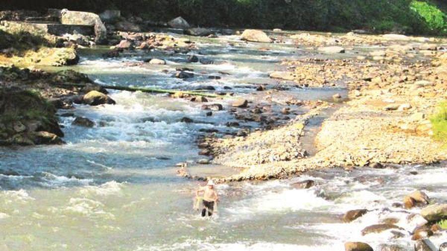 Những dòng suối không trở về