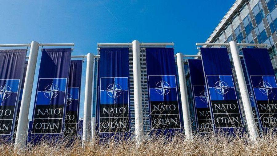 Đan Mạch hủy hội thảo về NATO của Mỹ, Nga nói quan hệ với NATO đang xấu đi từng ngày