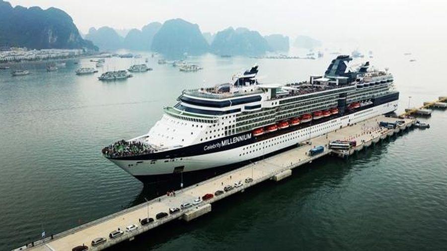 Bloomberg: Khách Trung Quốc tăng đột biến, Global Ports muốn đặt cảng tại Việt Nam