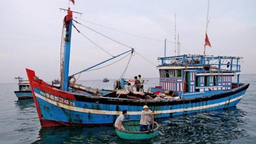 Gỡ khó cho tàu cá 67: 'Giằng co' giữa ngân hàng và bảo hiểm