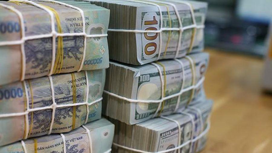 Không có khoản tiền gửi từ Kho bạc, lãi suất vẫn hạ nhiệt