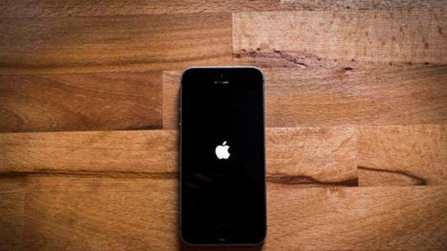 Iphone 9 ra đời thay cho sự xuất hiện của Iphone SE 2?