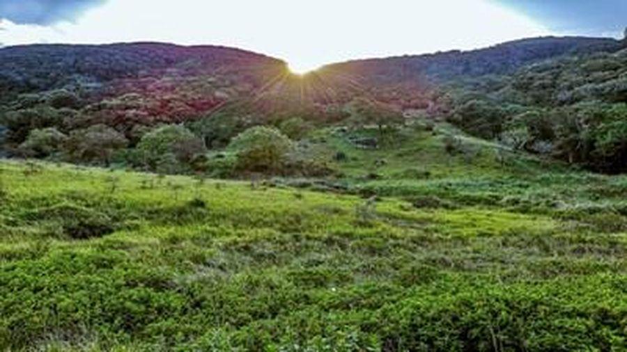 Đề cử Khu sinh quyển Thế giới gắn với Vườn Quốc gia Núi Chúa