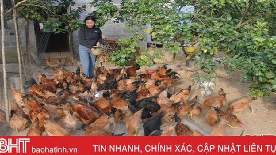 Nhân 'hạt giống đỏ' trong phong trào phụ nữ cơ sở ở Hà Tĩnh