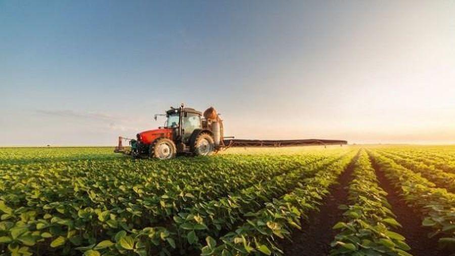 Dự thảo Nghị định tích tụ đất đai: VCCI đề nghị xem lại vấn đề thu hồi đất