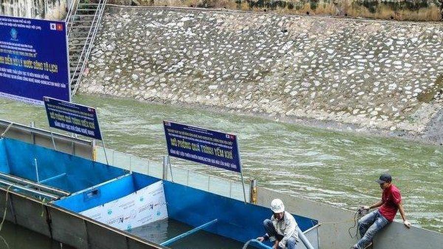 Lùm xùm chuyện làm sạch sông Tô Lịch bằng công nghệ Nhật Bản: Chủ tịch Hà Nội bảo lưu ý kiến nói về JEBO