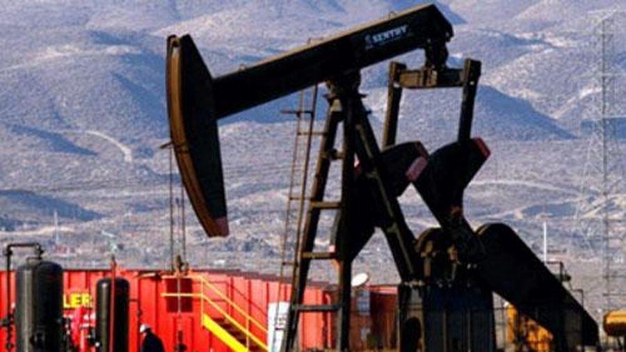 Giá xăng, dầu (9/12): Thị trường ổn định