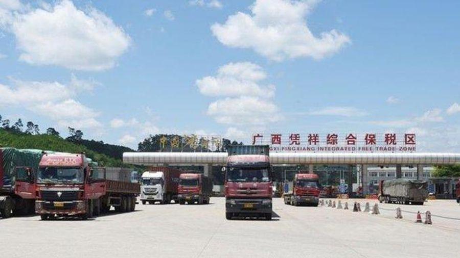 Tin kinh tế 8AM: Trung Quốc siết mạnh, khối hàng tỷ USD của Việt Nam đổ dốc; giá vàng trở lại đáy
