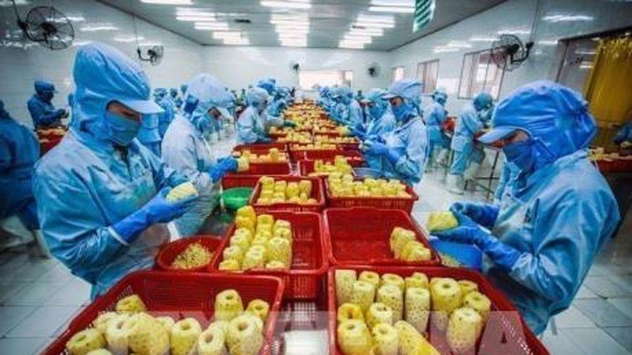 Xuất khẩu rau quả giảm nhẹ