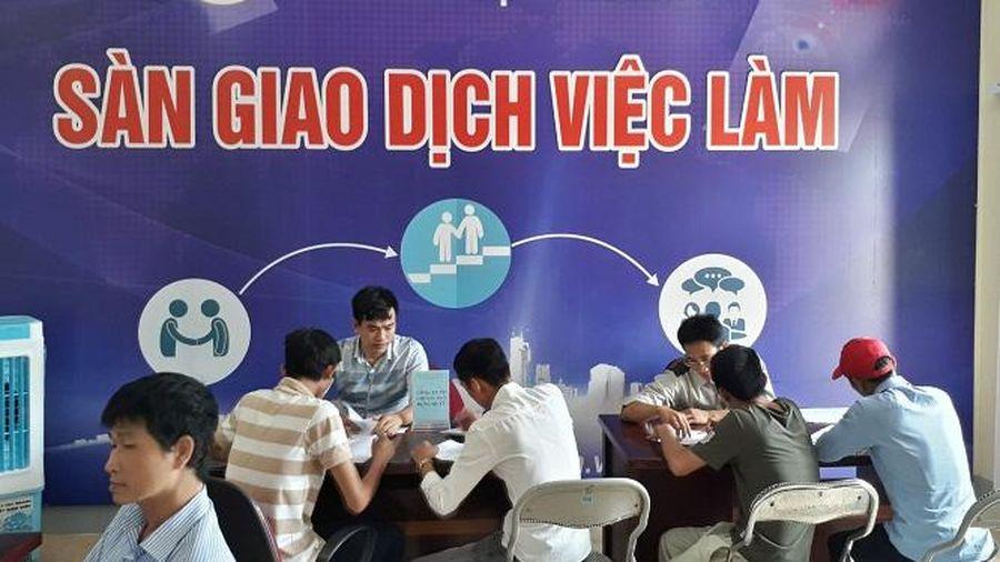 Trung tâm Dịch vụ việc làm Nghệ An: Cầu nối giữa doanh nghiệp và người lao động