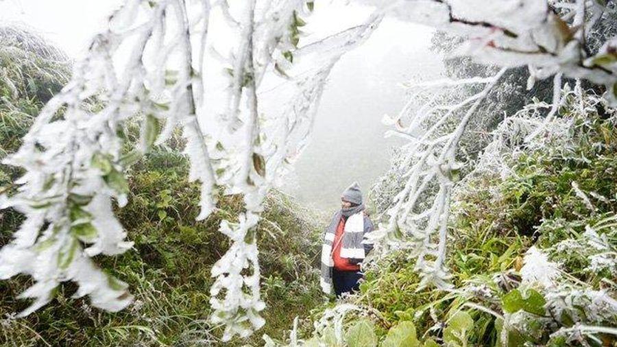 Thời tiết 9/12: Bắc bộ rét đậm, vùng núi xuất hiện băng giá