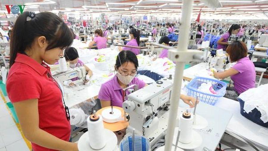 Kim ngạch thương mại Việt Nam-Ai Cập lạc quan với mục tiêu 1 tỷ USD