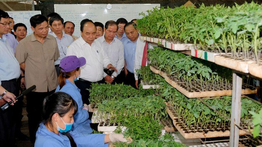 Hội nghị 'Thủ tướng Chính phủ đối thoại với nông dân'