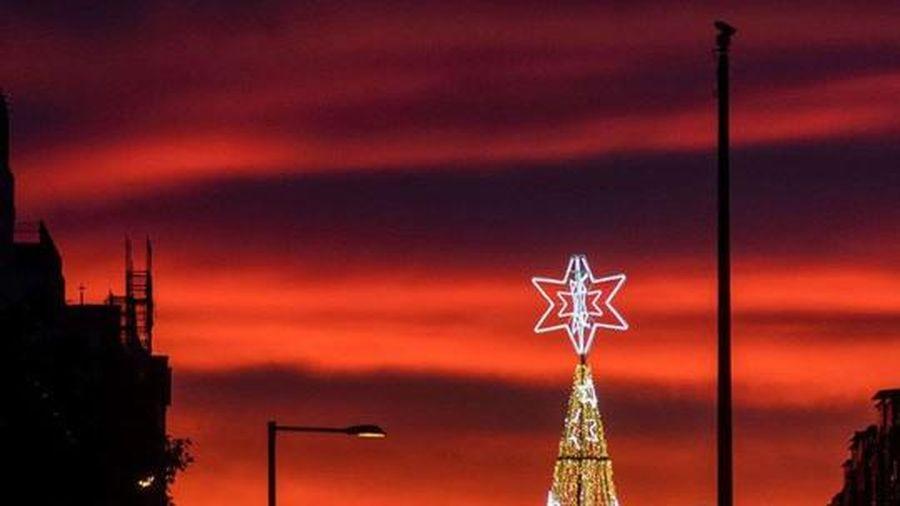 Choáng ngợp những cây thông Noel lung linh trên khắp thế giới