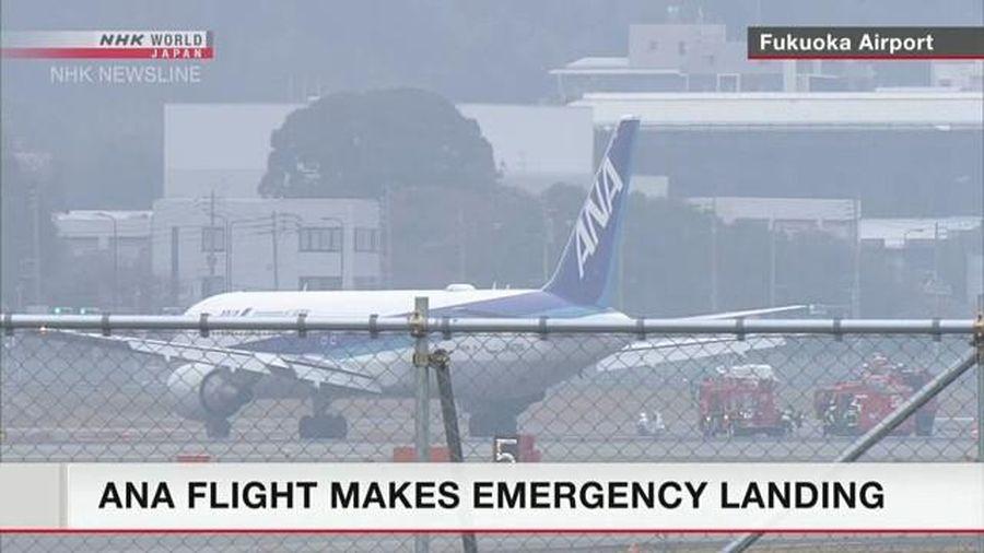 Máy bay Nhật chở 278 người hạ cánh khẩn do động cơ bốc cháy