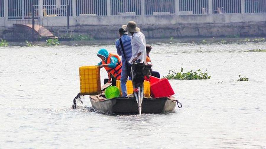 Việt Nam thả hơn 91 triệu con giống tái tạo nguồn lợi thủy sản