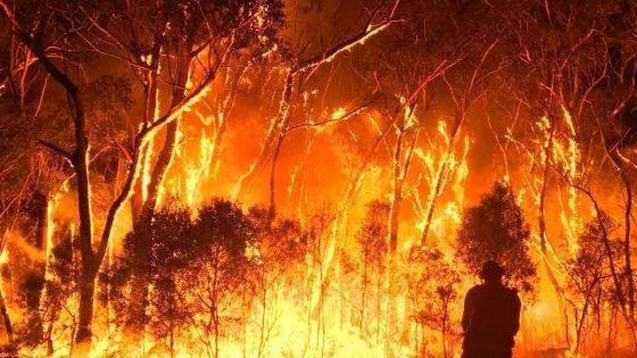 Australia ghi nhận nhiệt độ cao nhất trong lịch sử
