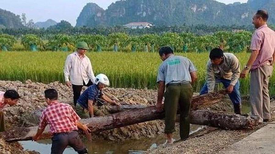 Hành trình phát hiện bãi cọc quý thời Trần hàng nghìn năm tuổi ở Hải Phòng