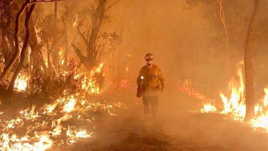 Úc ban bố tình trạng khẩn cấp vì khủng hoảng cháy rừng