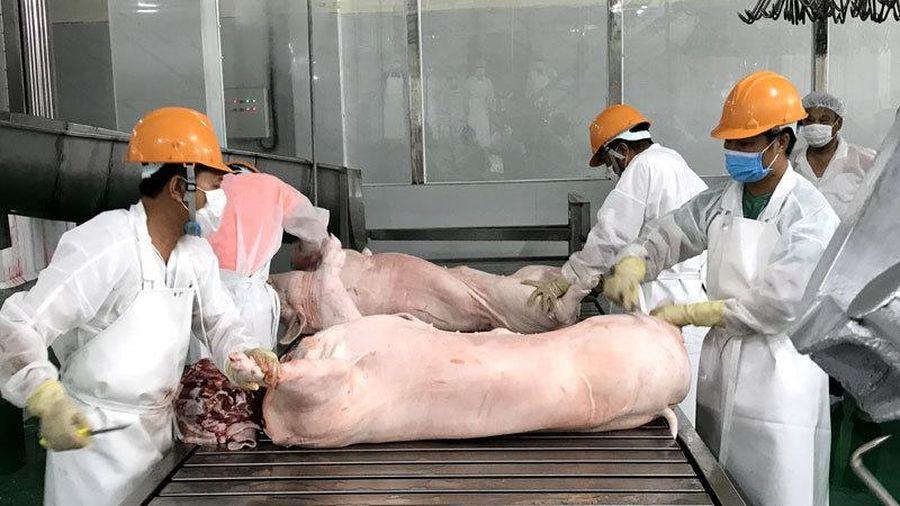 Bổ sung nửa triệu tấn thực phẩm, giá lợn vẫn đắt đỏ nhất lịch sử