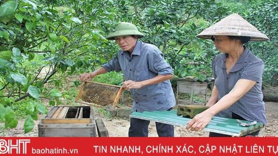 Rời tay súng, cầm cuốc, cầm cày 'chiến đấu' với đói nghèo ở huyện miền núi Hà Tĩnh