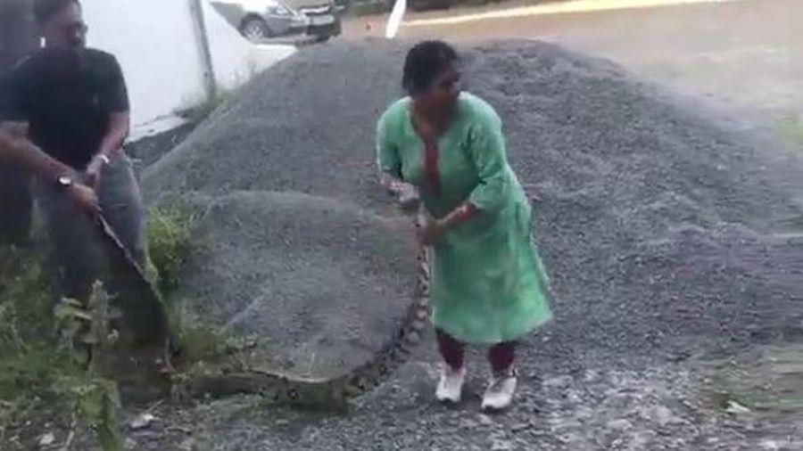 Người phụ nữ 60 tuổi dùng tay không tóm cổ trăn 'khủng'