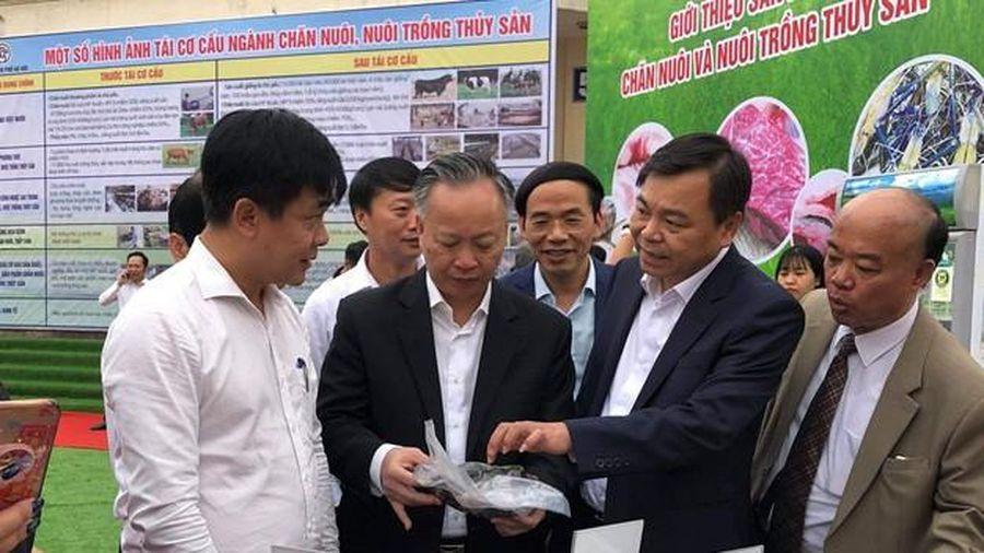 Để đẩy mạnh tái cơ cấu ngành Nông nghiệp