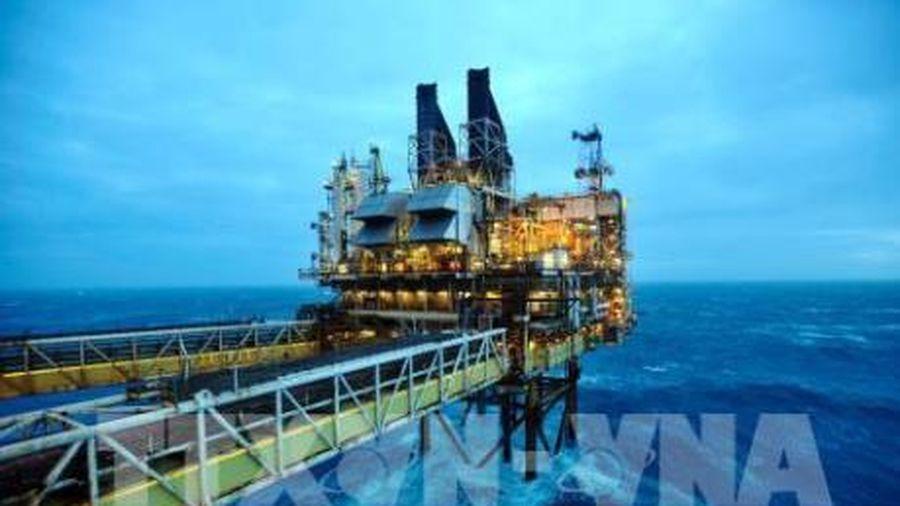 Giá dầu châu Á vẫn ở mức cao nhất trong ba tháng