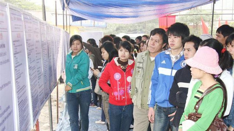 TP. Hồ Chí Minh: Sôi động thị trường việc làm cuối năm