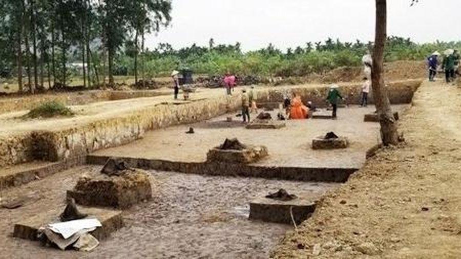 Phát hiện bãi cọc nghìn năm tuổi bên sông Bạch Đằng
