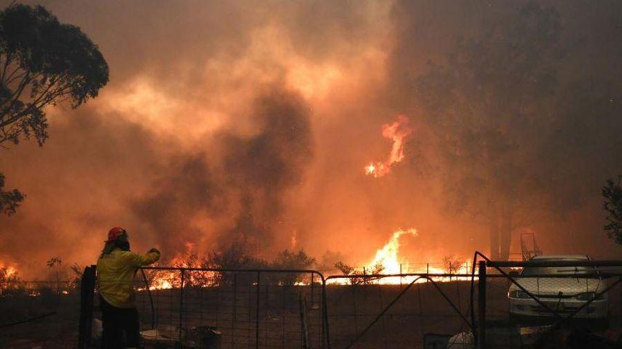 Nóng 41,9 độ C gây nhiều đám cháy rừng, bang đông dân nhất Australia tuyên bố tình trạng khẩn cấp