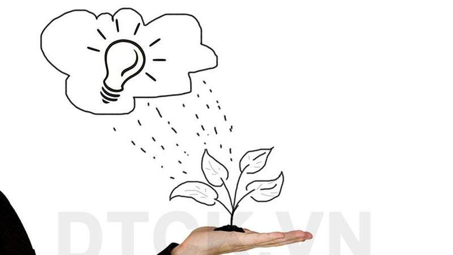 Nhận định thị trường phiên 20/12: Cân nhắc tích lũy thêm cổ phiếu