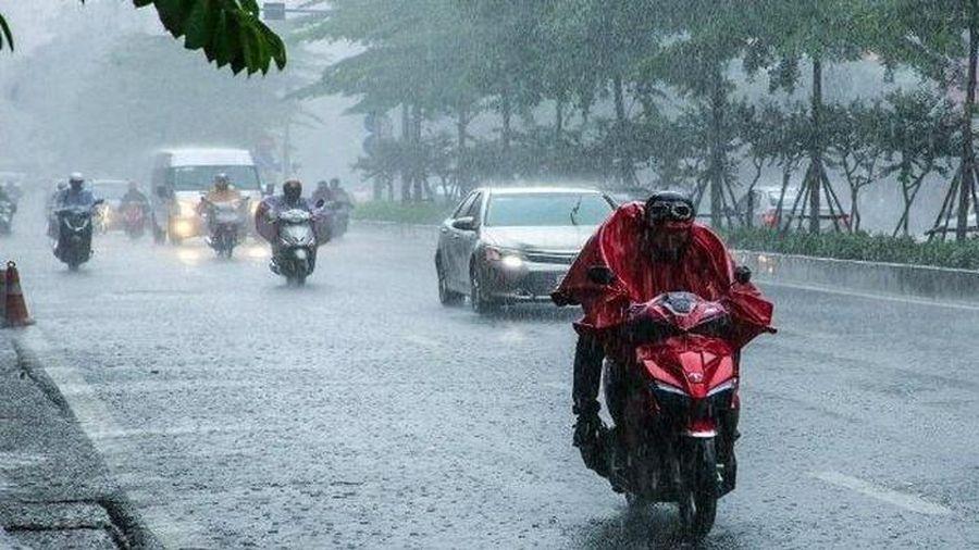 Hà Nội đón năm mới 2020 trong mưa rét