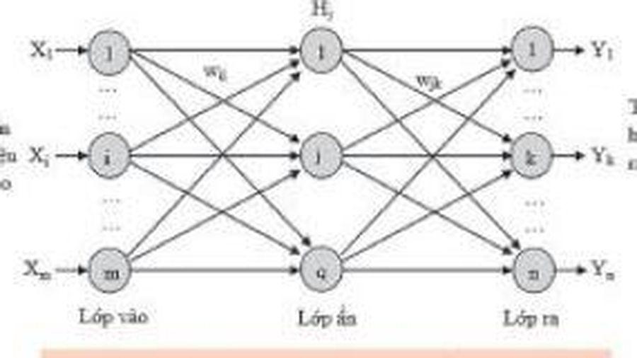 Nghiên cứu ứng dụng trí tuệ nhân tạo (AI) xây dựng mô hình dự báo chuyển vị theo phương đứng cầu dây văng