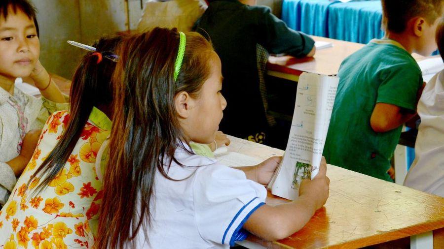 Quyền chọn sách giáo khoa có thuộc các trường?