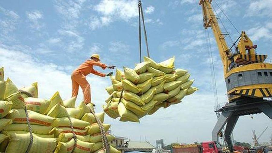 Xuất khẩu gạo sụt giảm 300 triệu USD