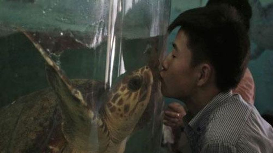 Điều kỳ lạ bên trong vườn bách thú Bình Nhưỡng