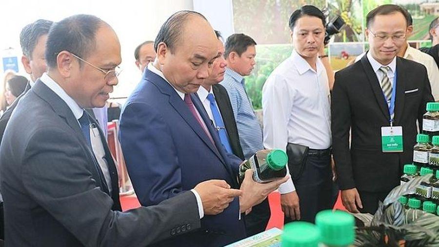 Chính phủ sẽ đồng hành cùng Trà Vinh thúc đẩy phát triển kinh tế xanh