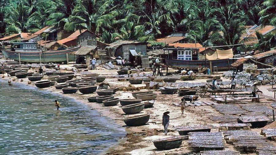 Chùm ảnh màu 'cực độc' về xứ 'hoa vàng cỏ xanh' Phú Yên đẹp lạ lùng thập niên 90