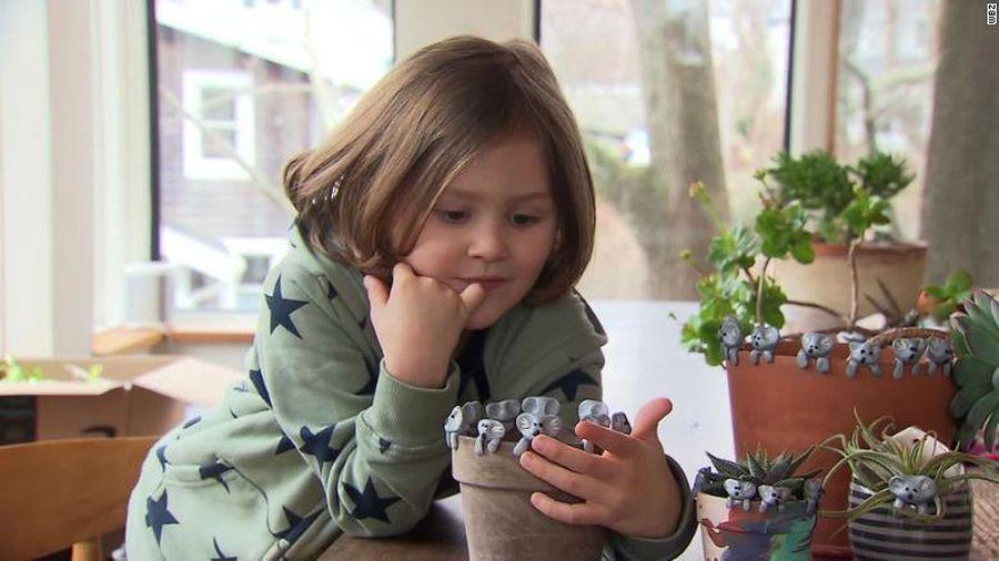 Cậu bé 6 tuổi giúp quyên góp 20.000 USD khắc phục cháy rừng Australia