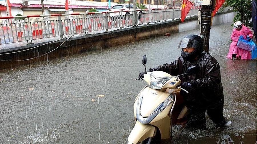 Nam Định ngập nặng ngày đầu năm mới