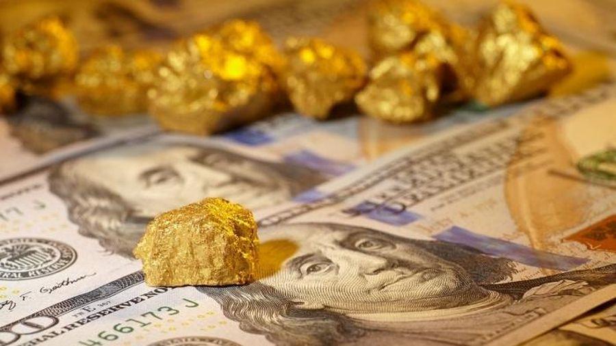 Giá vàng hôm nay 26/1: Nhà đầu tư tăng mua, giá vàng thăng hoa